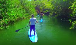 Standup paddle guide/ Instructor at SUP Santa Catalina