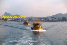 phi phi scuba boats